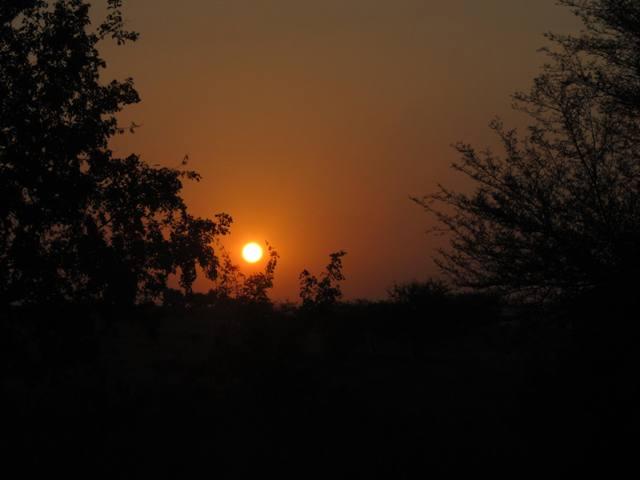 Nature Sun Set Photography Zero Creativity.jpg