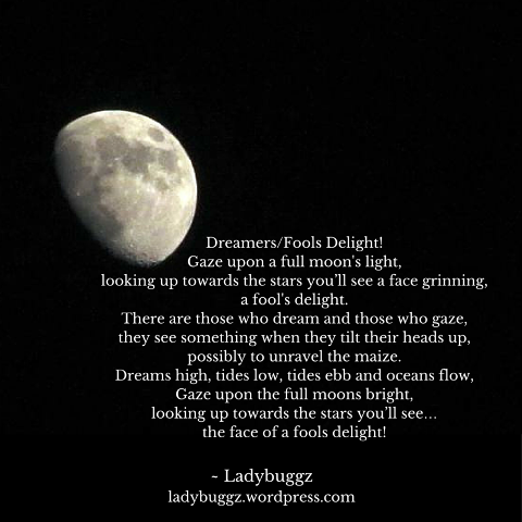 Moon-Photography-Photo-Poetry-Lady.png