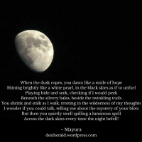 Requesting Photo Poetry on Moon Photography