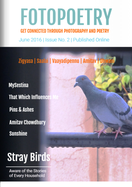 Stray-Birds-Photo-Poetry-Flipbook