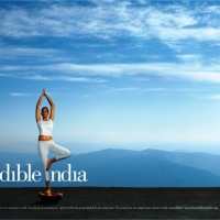 Impact of Incredible India Logo