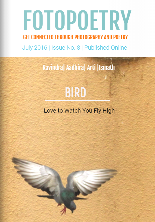 Poetry-On-Birds-Cover.png